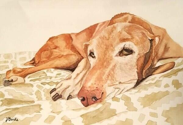 Labtype dog painted to look at the viewer resting their head on tan blanket
