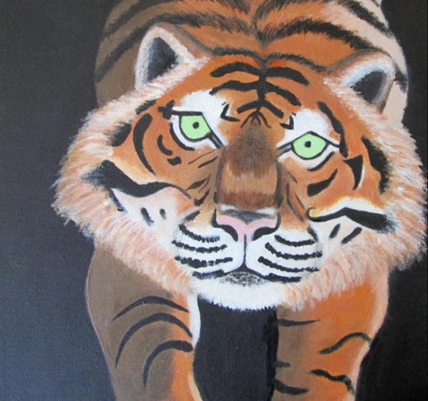 Orange and black stripped tiger Only front legs and face are visible