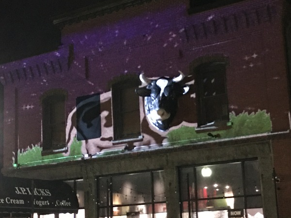 Light display of cow body standing on grass projected onto the Jamaica Plain store using our plastic cow head as the head